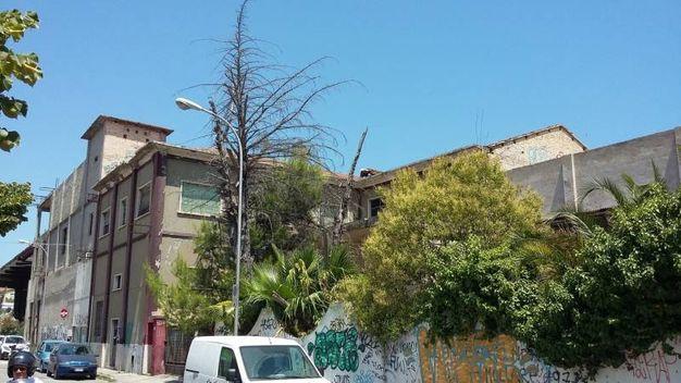 San Benedetto del Tronto, un boato poi la nuvola di polvere. Attimi di paura tra i residenti di via Calatafimi per il crollo di parte di un tetto