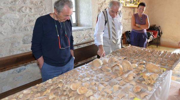 I resti ossei trovati a Cittiglio