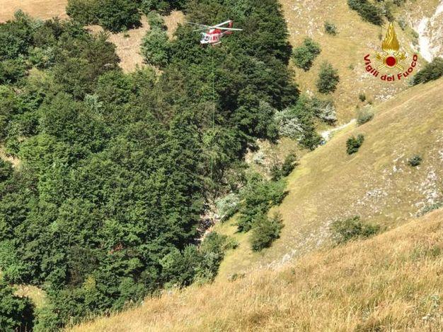 E' stata salvata dall'elicottero dei vigili del fuoco di Bologna