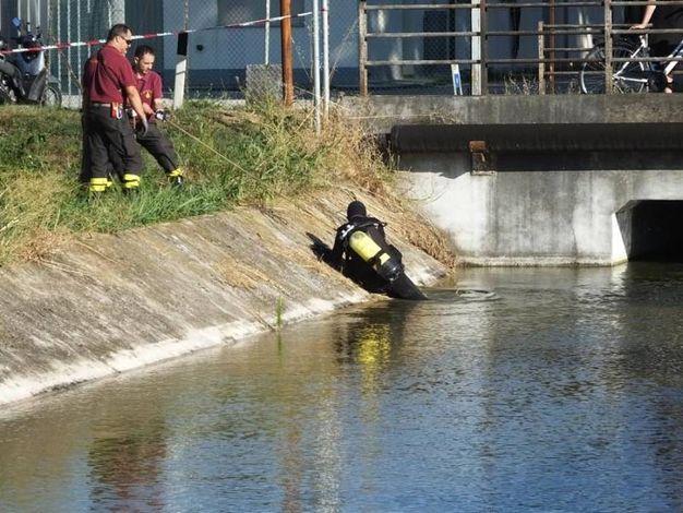 Il canale ha gli argini ripidi (foto Lecci)