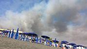 Roma, incendi a Castel Fusano. Il fumo invade la spiaggia (Ansa)