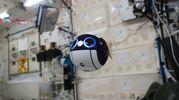 Il robot amichevole Int-Ball (Foto: JAXA/NASA)