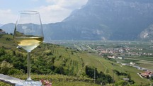 Valle di Cembra, culla del vino