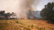 Un'immagine dell'incendio di Piancastagnaio