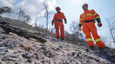 Montale dopo l'incendio (foto Gabriele Acerboni/FotoCastellani)