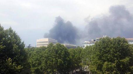 Incendio Roma, rogo in zona Magliana: il fumo all'Eur (foto Ansa)