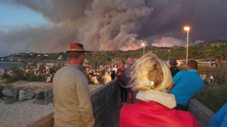 Incendi Costa Azzurra, le persone evacuate a Bormes Les Mimomas (Foto Twitter)