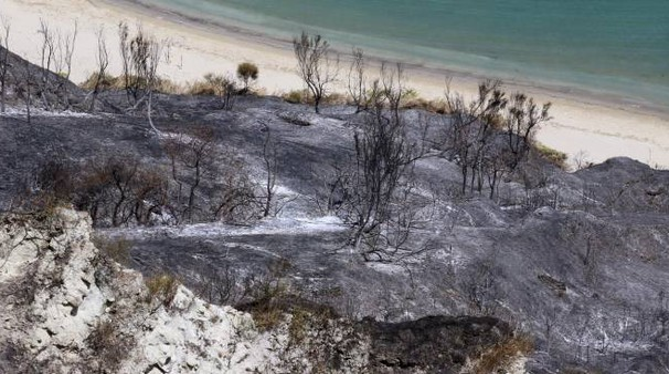 Incendio sul San Bartolo, il giorno dopo (Fotoprint)