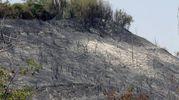 La desolazione il giorno dopo l'incendio (Fotoprint)