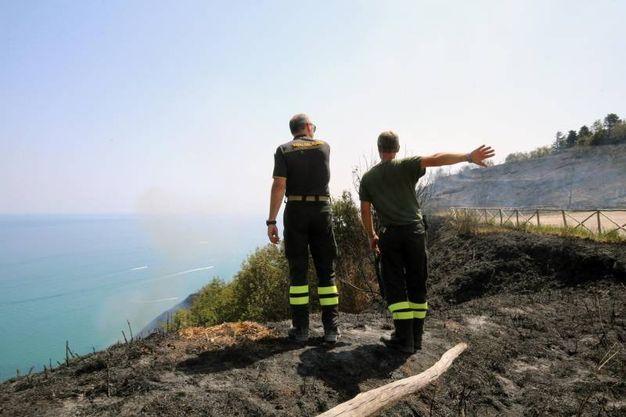 Il fuoco minacciava Fiorenzuola di Focara e Casteldimezzo (Fotoprint)