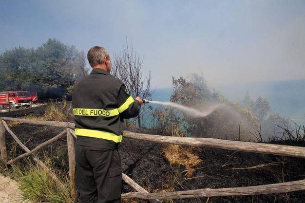 Decisivo il lavoro di pompieri, forestali e volontari (Fotoprint)