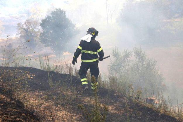 Pompieri vicino al rogo  (foto Ravaglia)