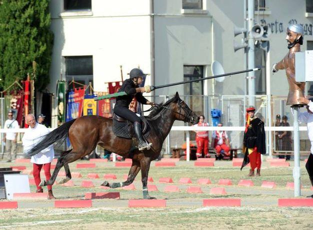 Cavaliere di Porta Maggiore (foto Labolognese)
