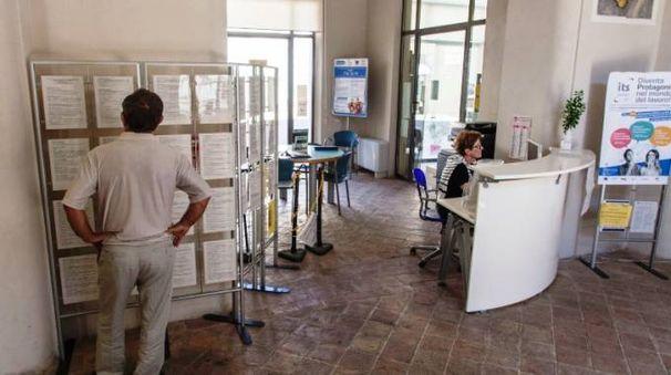 Un utente consulta gli annunci di lavoro al Job di Pesaro