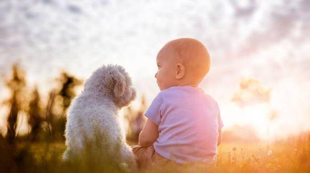 A incidere sulla salute dei bambini sono altri fattori - Foto: iStock / Ivanko_Brnjakovic