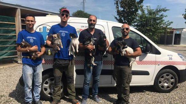 I volontari dell'Enpa con i cani