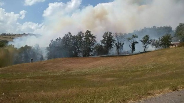 Le fiamme minacciano case e la strada