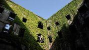 L'interno del complesso di Sant'Orsola (Giuseppe Cabras / New PressPhoto)