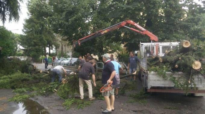Maltempo, devastazione al quartiere Romiti