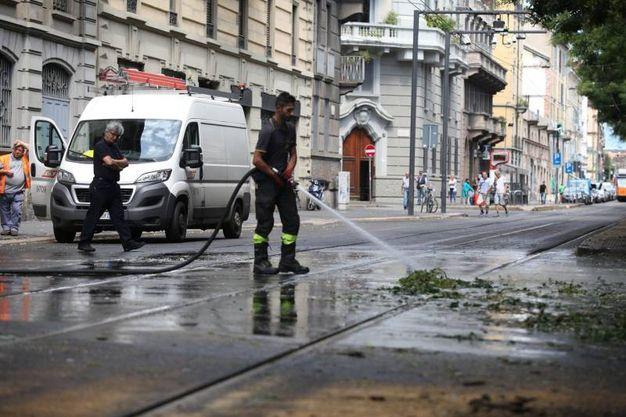 Tra i disagi causati dal maltempo a Milano, anche un albero caduto in viale Montello (Lapresse)