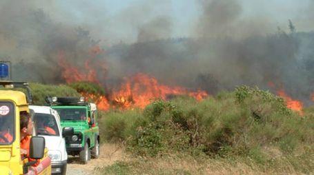La provincia di Grosseto è stata messa a dura prova dagli incendi