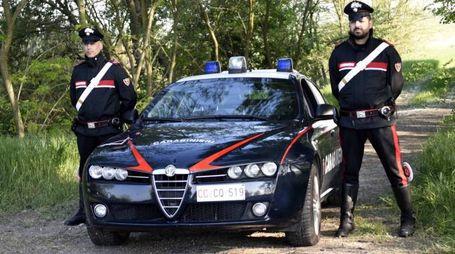 Un servizio inteforze, coordinato dai militari di Comacchio, ha permesso di bloccare la manifestazione