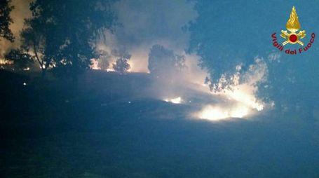 I vigili del fuoco hanno impedito che l'incendio si propagasse alle aree vicine