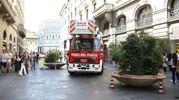 Le fioriere in via Martelli (foto Umberto Visintini/New Press Photo)