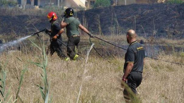 I vigili del fuoco in azione per cercare di arginare le fiamme