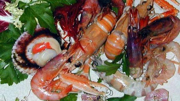 Crostacei e molluschi a tavola
