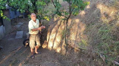 Luciano Scapazzoni, 83 anni, coltiva ancora da solo il suo podere