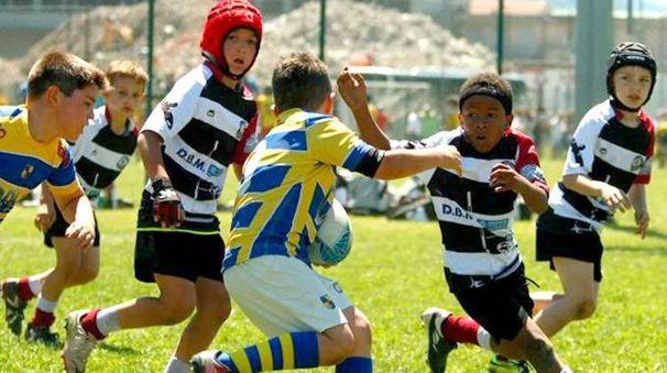 Un torneo di mini- rugby