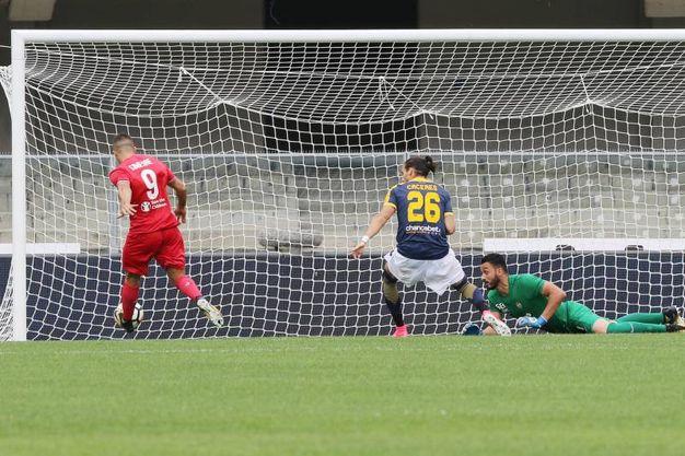 Verona-Fiorentina 0-1, Simeone (LaPresse)