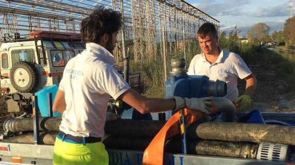 I volontari della Misericordia di Empoli impegnati a Stagno