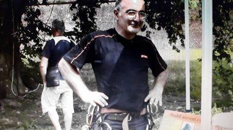 L'ESPERTO L'agronomo Piergiorgio Tambellini detta le coordinate dell'emergenza: «Alberi vecchi e mal potati, occorre monitorare»