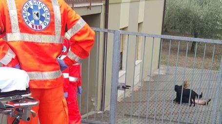 I soccorritori del 118 sul posto e il cane che non si allontana (foto D'Errico)