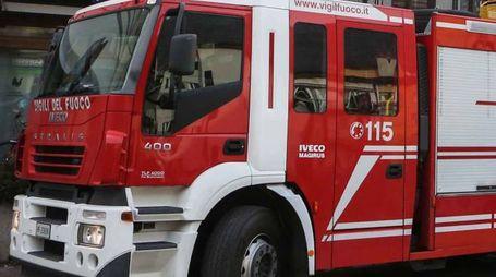Vigili del fuoco (Orlandi)
