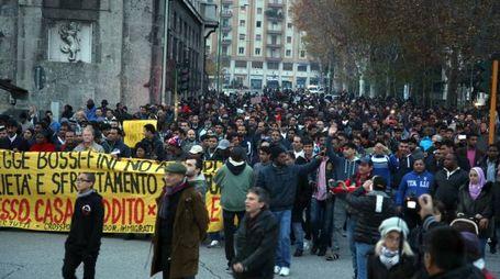 Manifestazione di immigrati 29 novembre 2014 a Brescia
