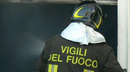 Vigile del fuoco (immagine d'archivio)