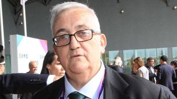 Mario Borghezio (Ansa)