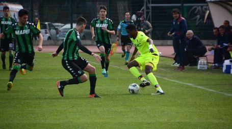 Viareggio Cup: Bologna - Sassuolo