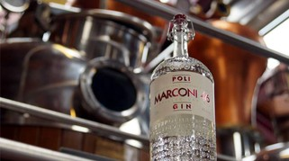 Gin, gli 8 italiani da provare