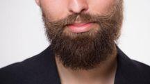 I consigli per una barba perfetta (Foto: Svyatoslav Lypynskyy/Alamy/Olycom)