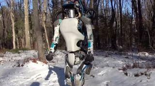 6 robot del 2016 di cui dobbiamo ricordarci