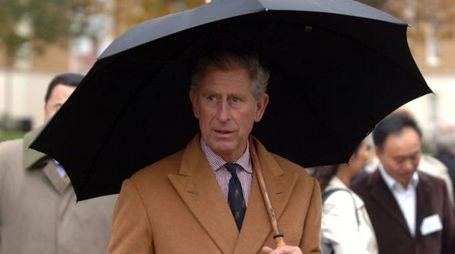 Il principe Carlo ha scritto una guida sul 'global warming' - Foto: Jack Sullivan / Alamy