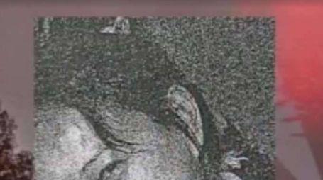 Cadavere in trolley, forse donna sparita