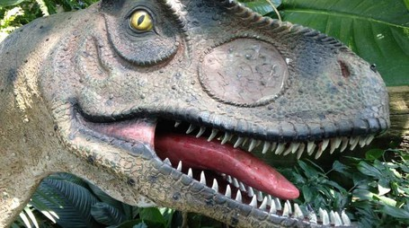 Dinosauri in mostra