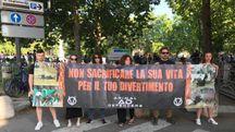 La manifestazione di Animal Defenders