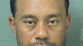Tiger Woods, dai successi agli eccessi