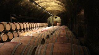 Kalterersee Doc, il vino del lago di Caldaro